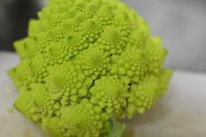 Roman broccoli